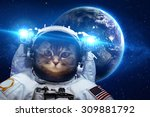 Stock photo beautiful cat in outer space elements of this image furnished by nasa 309881792