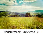 summer in mountains in ukraine... | Shutterstock . vector #309996512