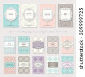 frames and patterns set.... | Shutterstock .eps vector #309999725