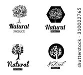 design elements for organic... | Shutterstock . vector #310022765