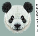 illustrative portrait of panda... | Shutterstock . vector #310039322
