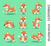cartoon character shiba inu dog ... | Shutterstock .eps vector #310098842