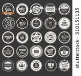 premium  quality retro vintage... | Shutterstock .eps vector #310151135