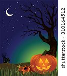 spooky halloween background | Shutterstock .eps vector #310164512