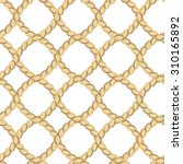 seamless pattern with ropes on... | Shutterstock . vector #310165892