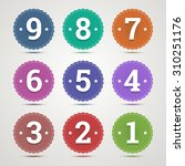 set of round emblems with... | Shutterstock . vector #310251176