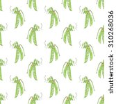green pea. seamless pattern... | Shutterstock . vector #310268036