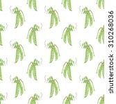 green pea. seamless pattern... | Shutterstock . vector #310268036