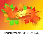 autumn background with leaves | Shutterstock .eps vector #310274366