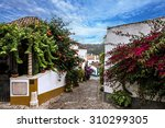 street of old town obidos ... | Shutterstock . vector #310299305
