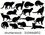 Stock vector cats silhouettes 310466852