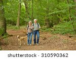Stock photo happy senior couple waking the dog in a forest in summer 310590362