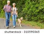 Stock photo happy senior couple hiking with labrador retriever dog in summer 310590365