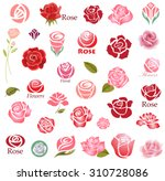 Set Of Rose Flower Design...