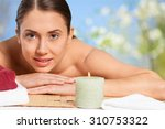 summer. | Shutterstock . vector #310753322