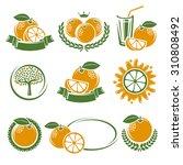 oranges labels and elements set.... | Shutterstock .eps vector #310808492