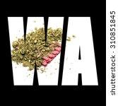 marijuana and cannabis ... | Shutterstock . vector #310851845