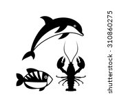 sealife logo template | Shutterstock .eps vector #310860275