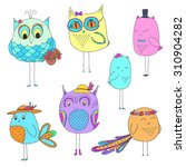 set of cute birds. hand drawn... | Shutterstock .eps vector #310904282
