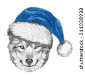 Portrait Of Wolf With Santa Hat....