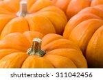 pumpkins | Shutterstock . vector #311042456