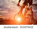mountain bike cyclist riding... | Shutterstock . vector #311073422