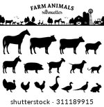 vector farm animals silhouettes ... | Shutterstock .eps vector #311189915