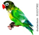 bright african parrot on a...   Shutterstock . vector #311217302