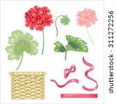 Set Of Flowers And Geranium...
