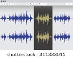 audio software  vector... | Shutterstock .eps vector #311333015