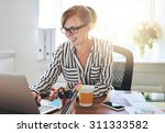 successful female entrepreneur...   Shutterstock . vector #311333582