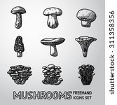 set of freehand mushrooms icons ... | Shutterstock .eps vector #311358356