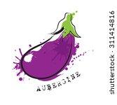 aubergine. vector. | Shutterstock .eps vector #311414816