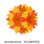 autumn leaves background | Shutterstock . vector #311469452