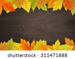 vector autumn background with...   Shutterstock .eps vector #311471888