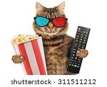 Cinema Concept. Cat In The 3d...