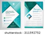 Vector Brochure Flyer Design...