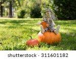 Autumn Nature Concept. Toy...