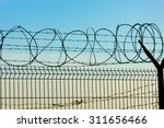 Barbed Wire Fence On The...