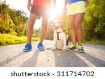 Stock photo active seniors getting ready for a run with their dog outside in green nature 311714702
