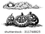 hand drawn illustration of a... | Shutterstock .eps vector #311768825