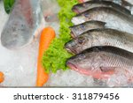 the fishes put on the ice for... | Shutterstock . vector #311879456