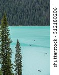 Small photo of Kayakers on Lake Louise backdropped by a forest of giant fir trees in Banff National Park, Canada.