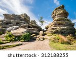 Weathered Brimham Rocks / Brimham Rocks on Brimham Moor in North Yorkshire are weathered sandstone, known as Millstone Grit,creating some dramatic shapes, many of which have been named