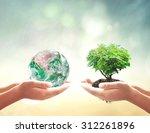 world environment day concept ...   Shutterstock . vector #312261896