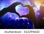 crowd of audience at during a... | Shutterstock . vector #312294632