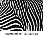 black and white zebra pattern... | Shutterstock . vector #31233613