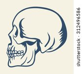 skull profile flat illustration ... | Shutterstock .eps vector #312496586