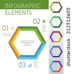 vector hexagon infographic... | Shutterstock .eps vector #312513605