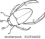 coloring page hydrophilidae | Shutterstock .eps vector #312516632